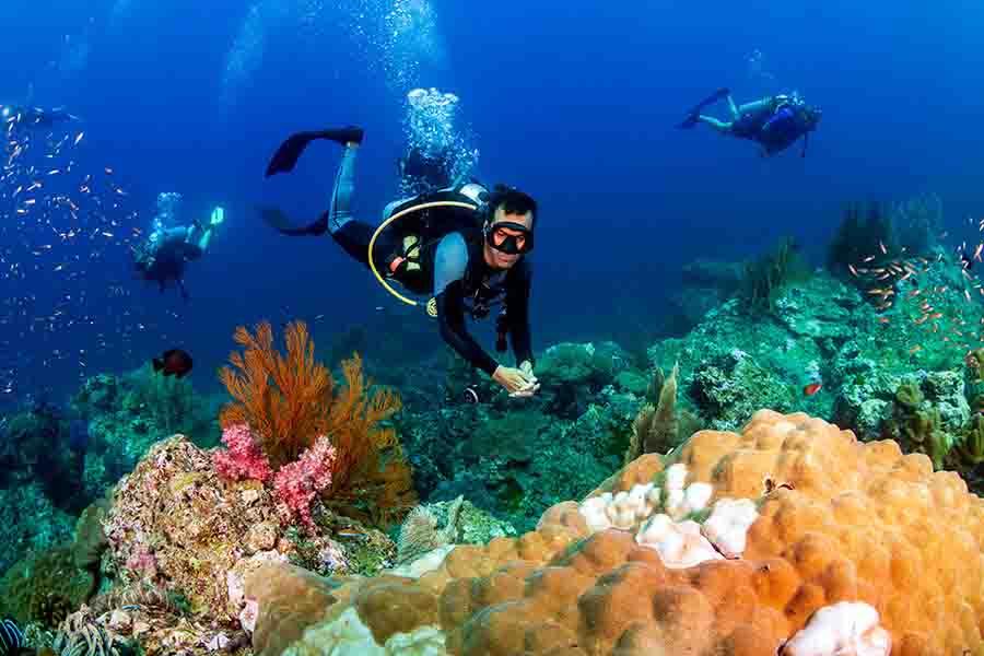 Scuba Diving Best Hurghada Tours